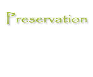 250 funding requests Preservation